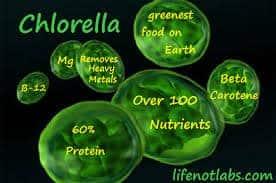 PH of Chlorella