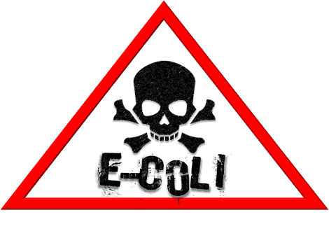 Top food poisoning foods